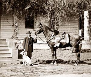 čovjek-konj-pas